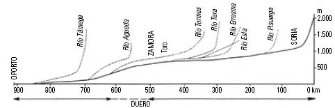 Figura 2. Bisectriz longitudinal de la cuenca del río Duero.