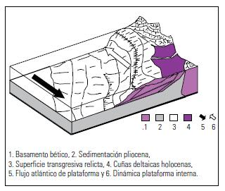 Figura 2. Modelo sedimentario de las cuñas deltaicas holocenas del río Guadalhorce.