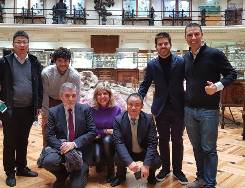 Tres expertos de China, nuevos miembros del Comité Internacional de REDESPA